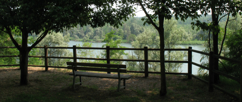 Il Parco del Ticino visto ad anelli