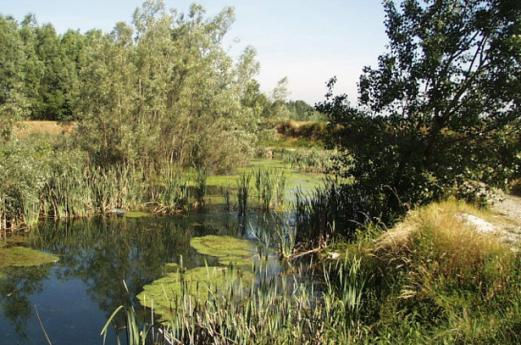 Parc régional du Serio
