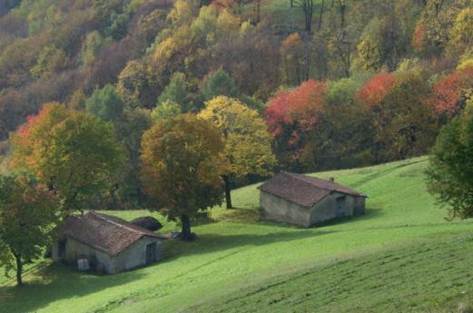 Parque Regional della Grigna Settentrionale