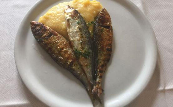 Dried Sardines: eat them with Polenta