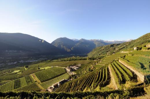 Vini valtellinesi, Prodotti tipici Lombardia