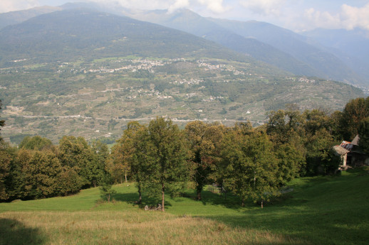 The other path of Aprica