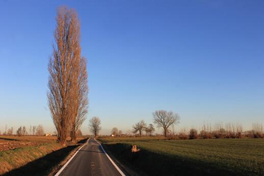 Nel mantovano, terra di confine