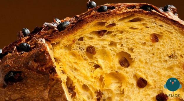 Milano a tavola – Tour guidato e degustazione: panettone e barbajada