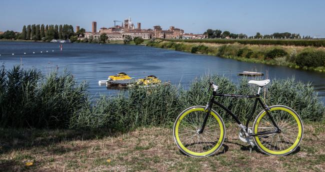 In bicicletta alla scoperta del Parco del Mincio