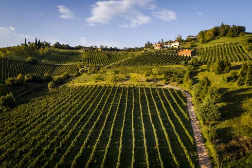 Il Cipresso apre la cantina, presenta i vini DOC di Bergamo