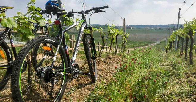 Satèn - Bike Tour Franciacorta