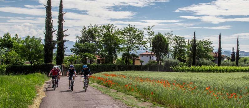 PAS DOSÉ  - Bike Tour Franciacorta