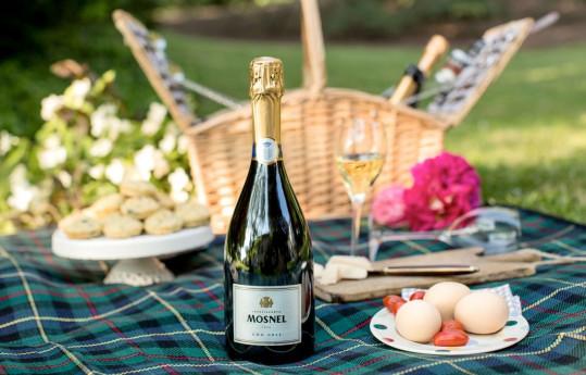 PICNIC CHIC alle Cantine Mosnel con picnic in vigna