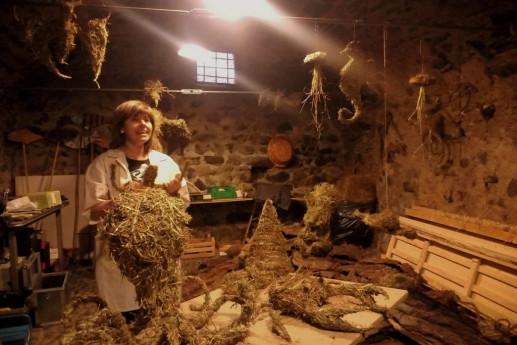 Land Art tra gli Artisti del borgo di Bienno