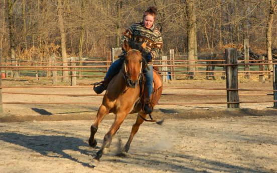 Weekend tra cavalli e cucina autentica - Il Pivione