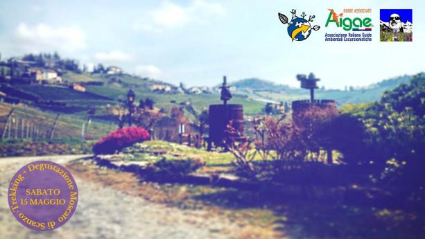 Escursione: InCammino nelle terre del Moscato di Scanzo