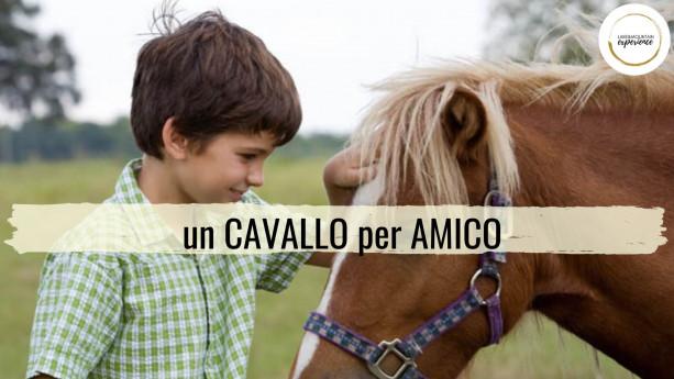 Un cavallo per amico