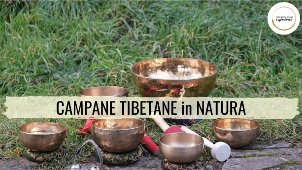 Campane tibetane in natura
