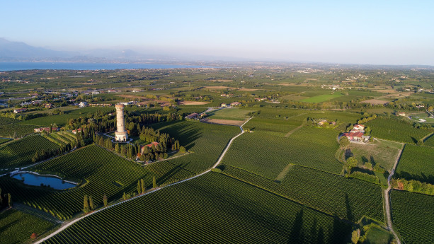 Azienda Agricola Citari