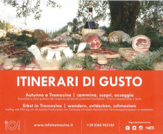 Itinerari di Gusto - Olio d'oliva
