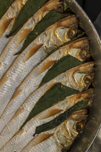 agoni, missoltino, pesce di lago