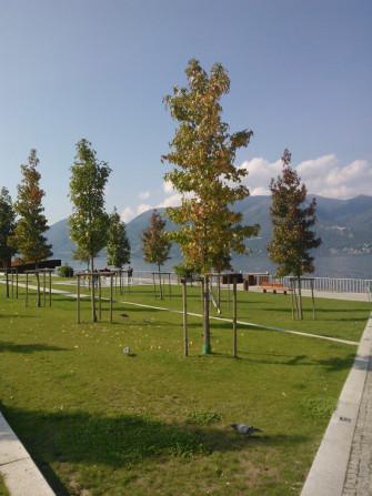 Lago Maggiore Luino Parco Lago
