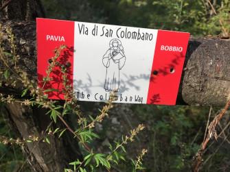 Camminata Sulla Via Di San Colombano