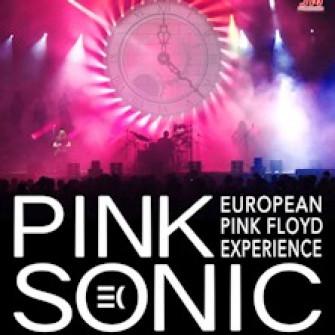 pink sonic biglietti