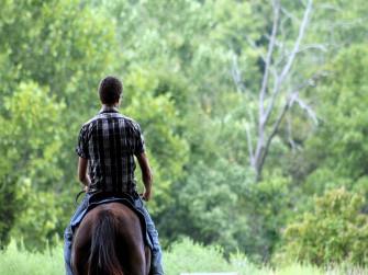 Passeggiata a cavallo al tramonto
