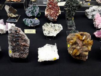 Mineralpavia