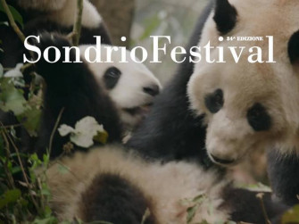 Sondrio Festival. Natura in arte