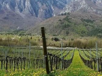 Sapori di Valle Camonica 2021
