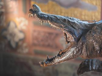 Dal santuario del coccodrillo al Museo Maglio