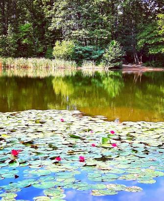 Una gita fuori porta in Brianza tra arte e natura