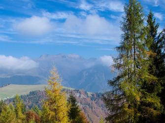 All'Albani sul sentiero dei minatori