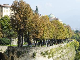 1. Dalla città di Bergamo all'Albenza