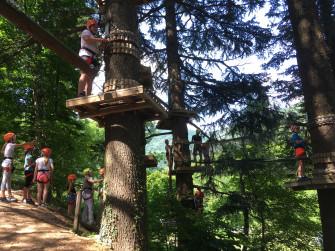 Festeggia il tuo compleanno sospeso sugli alberi
