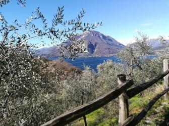 Assaporare il lago di Como
