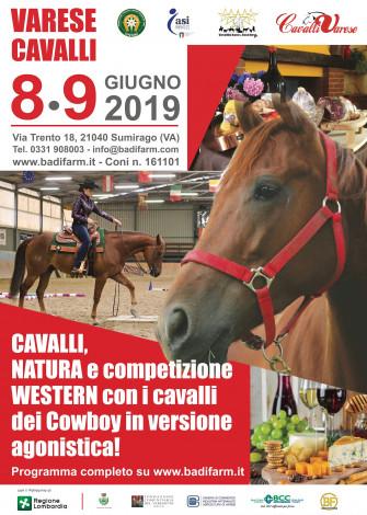 Varese Cavalli: Cavalli, natura e competizioni Western!