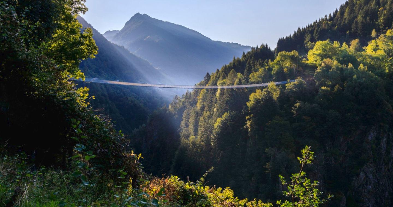 Les ponts de singe, le frisson de l'altitude sans aucun risque