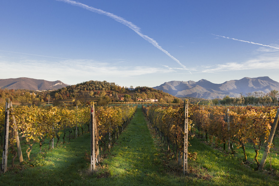 Franciacorta Wine Road
