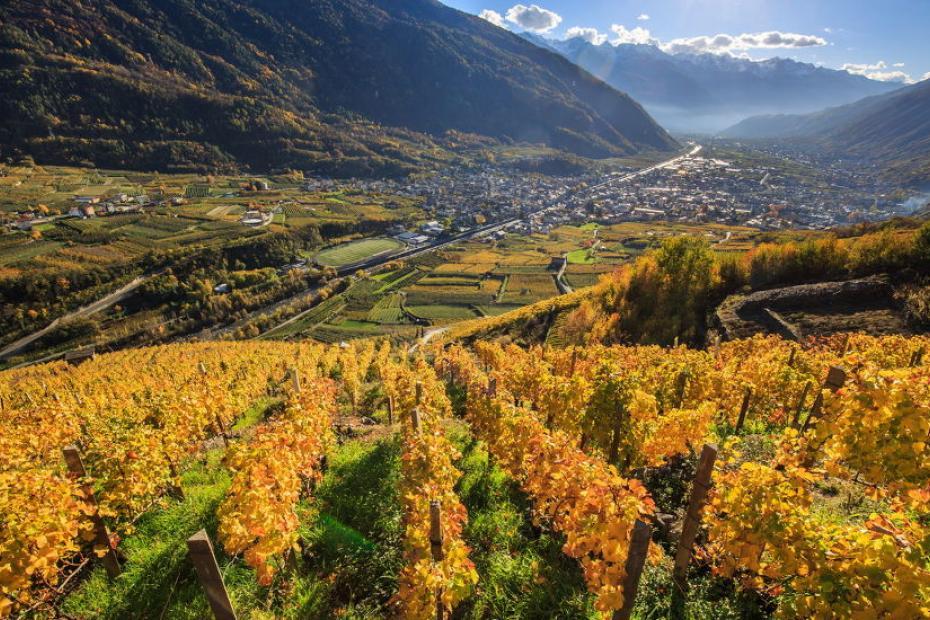 Taste the best food and wine in Valtellina