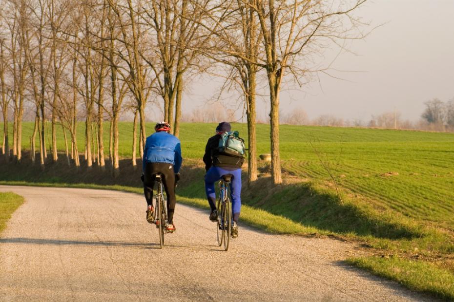 5. Se va en bicicleta