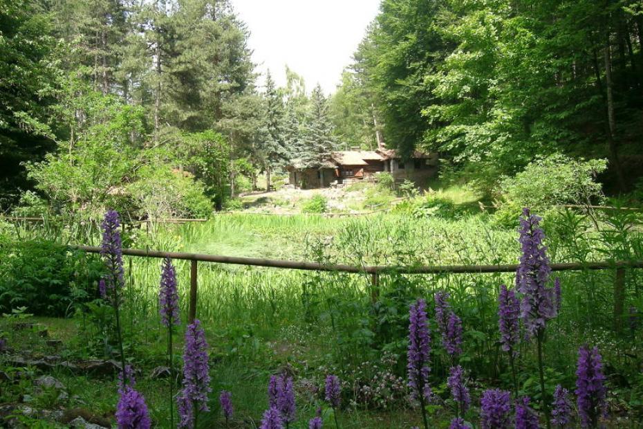 Gita al Giardino botanico alpino di Pietra Corva