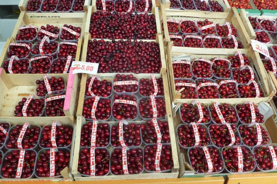 Le ciliegie di Bagnaria