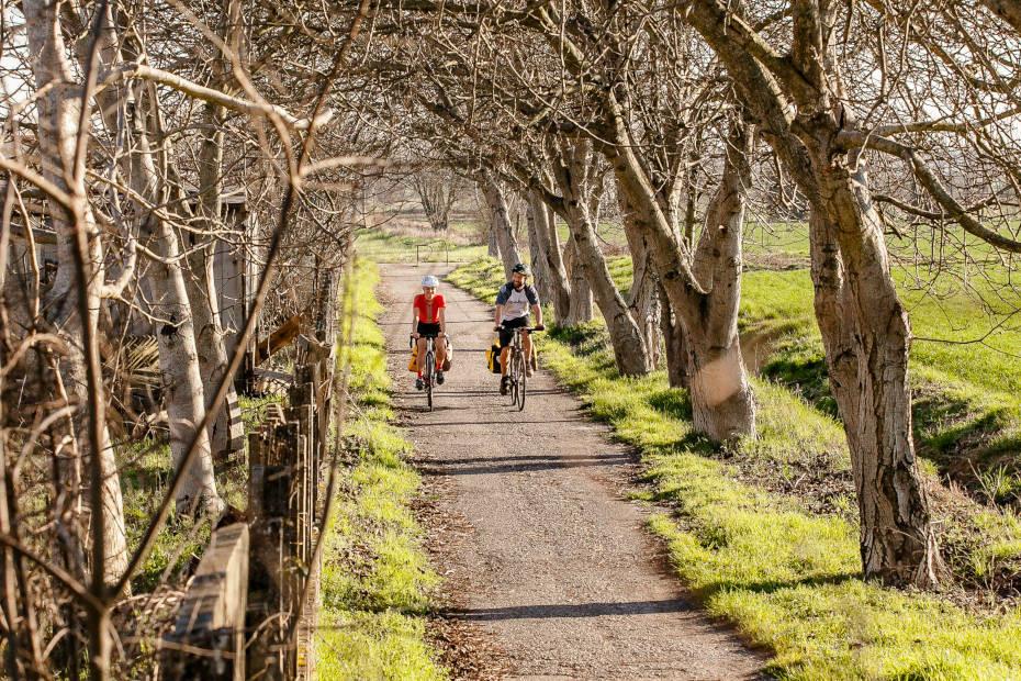 Train&Bike Mantova e Parco del Mincio