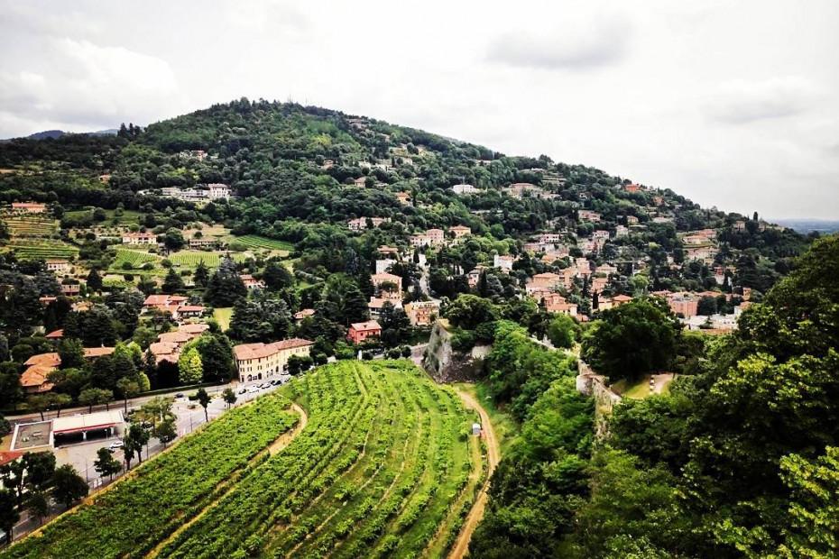 Colli dei Longobardi Wine Road