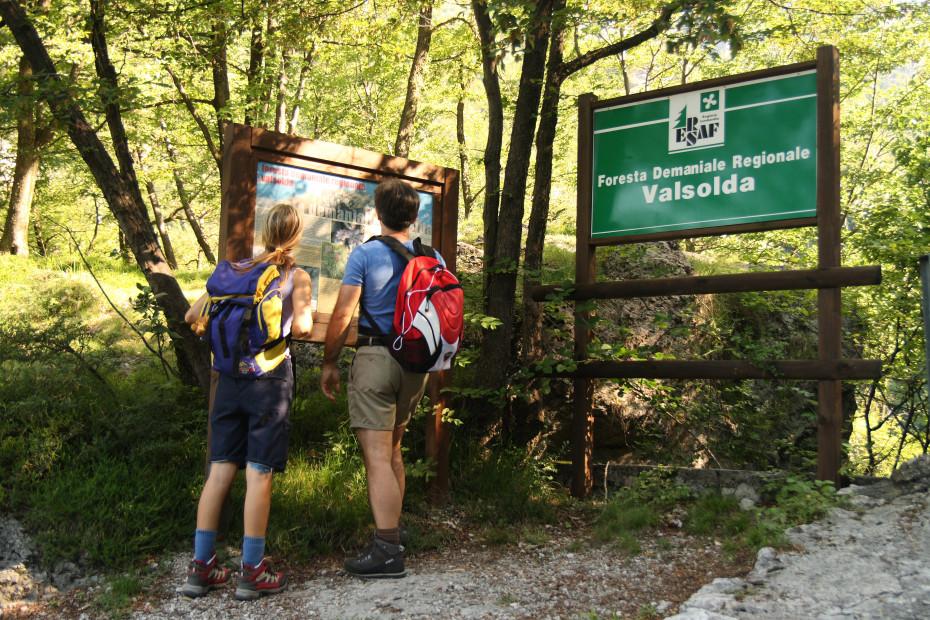 La Foresta regionale della Valsolda (CO) - 12/07/2020 - EVENTO SCADUTO