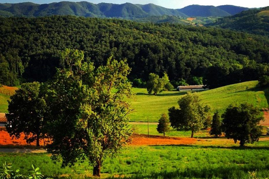 Colli Verdi (PV)