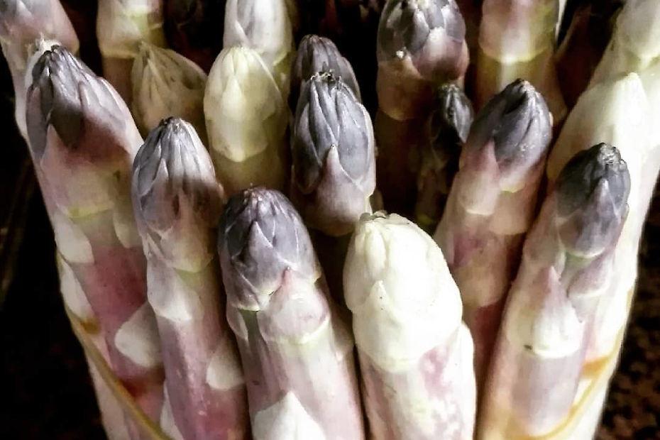 Asparago di Cilavegna (PV)