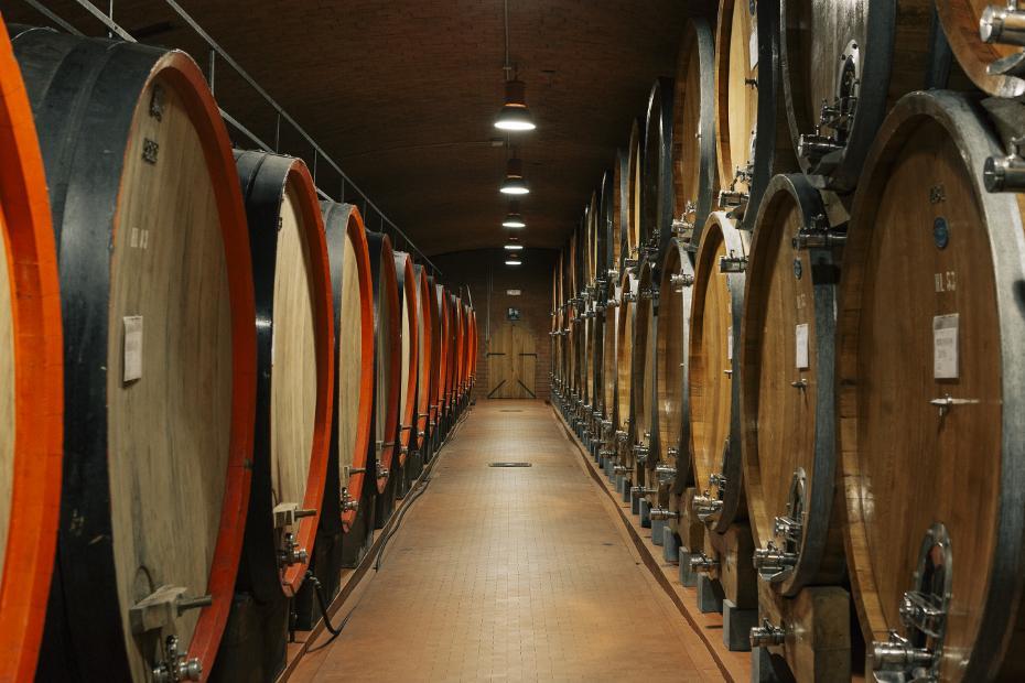 7. Il vino ha carattere
