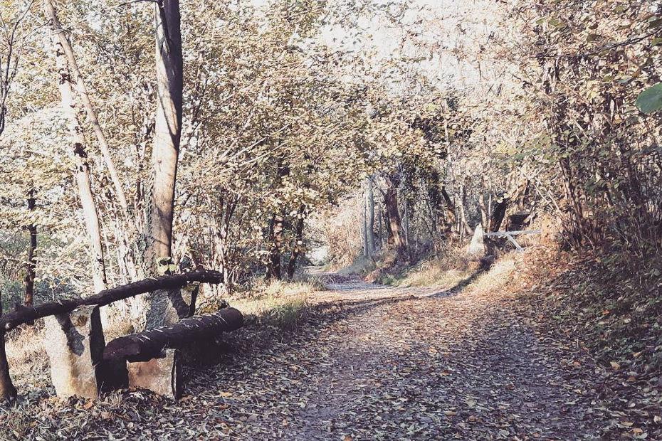The Buerga nature trail
