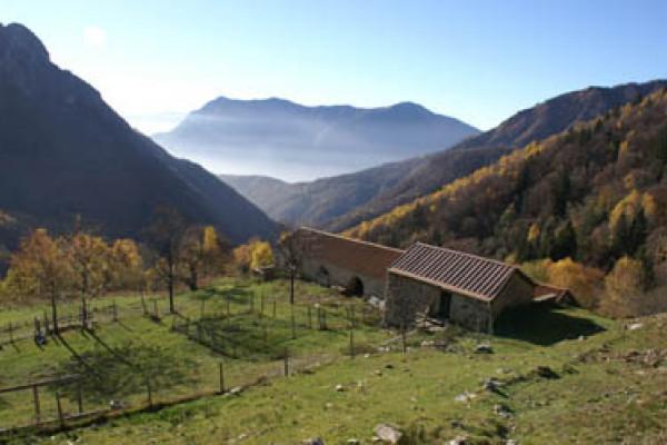 Alpe Erba