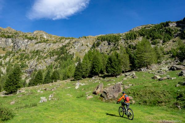 Val Fontana Alpe Campiascio